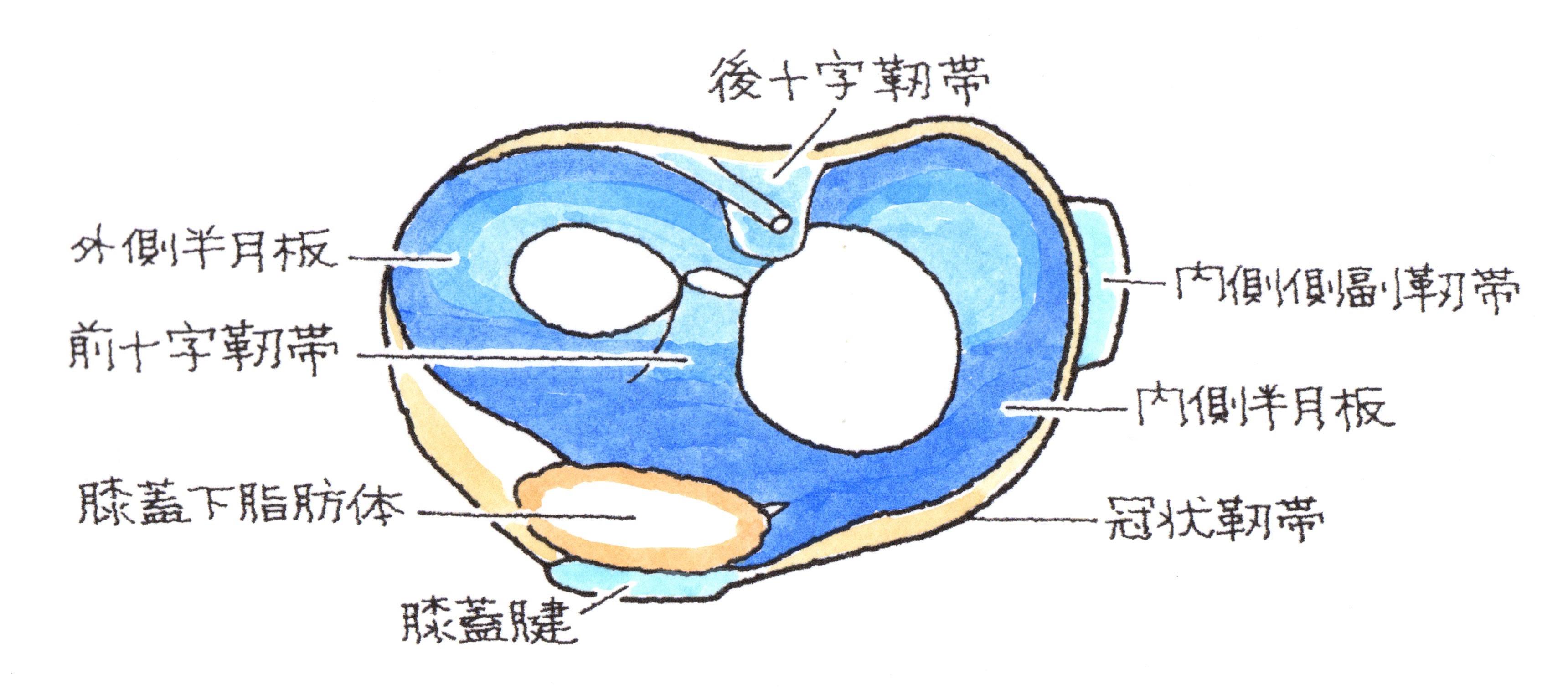129-1.jpg
